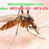Kiểm soát muỗi quận 6 giá rẻ