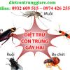 Kiểm soát côn trùng gây hại quận 1 giá rẻ