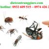 Kiểm soát côn trùng gây hại quận 3 giá rẻ