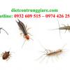 Kiểm soát côn trùng gây hại hóc môn
