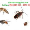 Kiểm soát côn trùng gây hại nhà bè