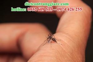 Tại sao côn trùng cắn sưng?
