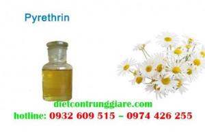 Thuốc trừ côn trùng Pyrethrin là gì?