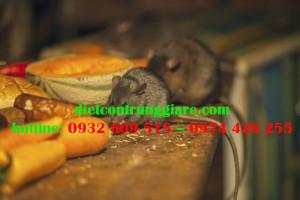 7 cách để chuột tránh xa