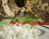 Mẹo kiểm soát chuột hiệu quả