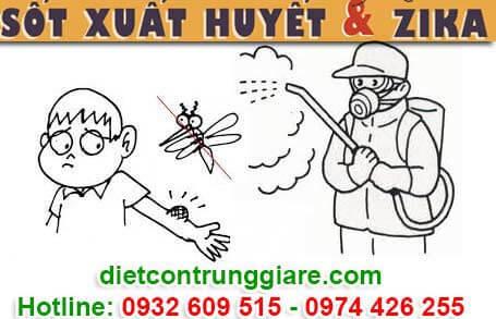 diệt muỗi tại quận 10 giá rẻ