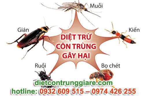 diệt côn trùng gây hại quận 4 giá rẻ