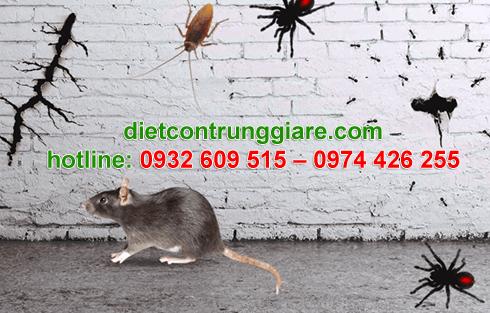 diệt côn trùng gây hại bình thạnh giá rẻ