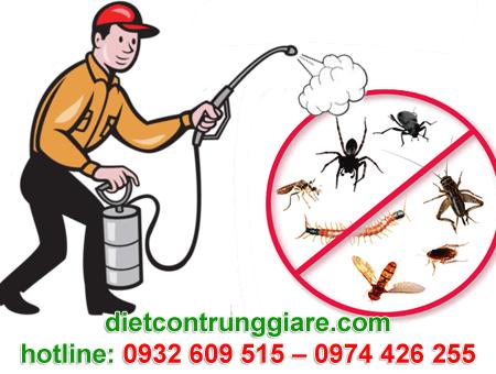 diệt côn trùng gây hại thủ đức giá rẻ