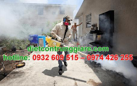 diệt muỗi tại bình chánh giá rẻ