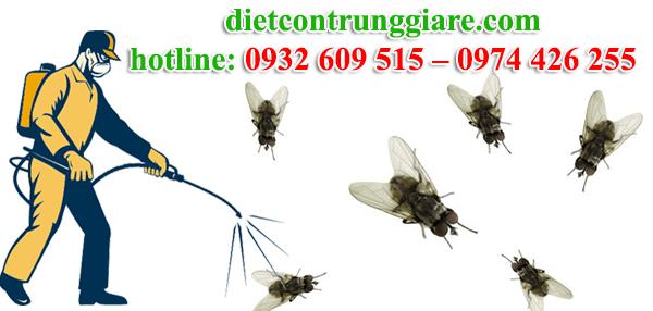 dịch vụ diệt ruồi tại quận tân phú giá rẻ