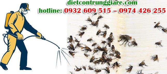 dịch vụ diệt ruồi tại căn tin giá rẻ