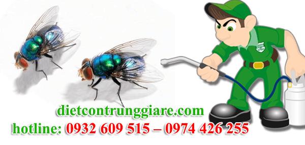 dịch vụ diệt ruồi tại củ chi giá rẻ