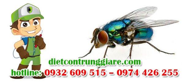 dịch vụ diệt ruồi tại nhà bè giá rẻ