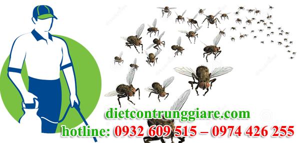 dịch vụ diệt ruồi tại quận 10 giá rẻ