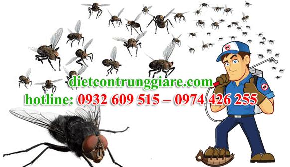 dịch vụ diệt ruồi tại quận 5 giá rẻ