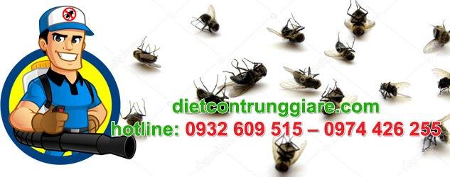 dịch vụ diệt ruồi tại quận 7 giá rẻ