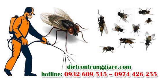 dịch vụ diệt ruồi tại khu công nghiệp giá rẻ