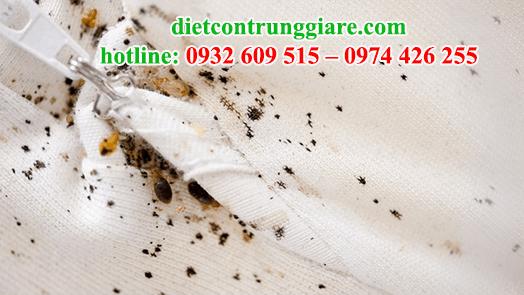 dịch vụ diệt rệp tại quận Gò Vấp giá rẻ