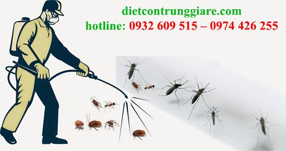 diệt muỗi tại quận 2
