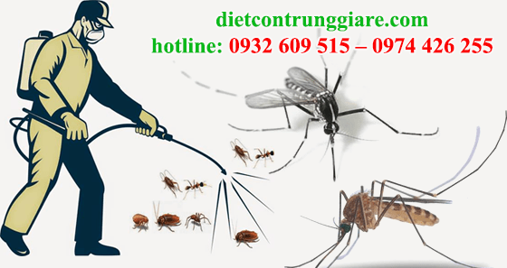 diệt muỗi tại quận 5