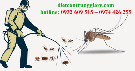 diệt muỗi tại quận 6