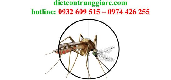 diệt muỗi tại bình chánh