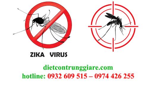 kiểm soát muỗi tại quận tân bình giá rẻ
