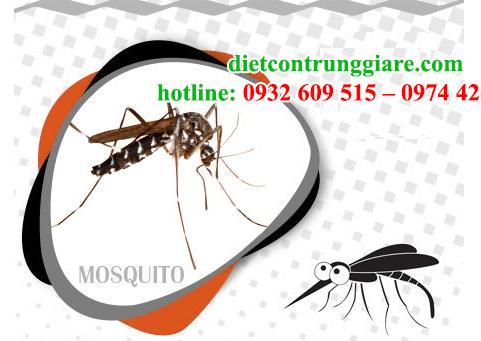 kiểm soát muỗi tận gốc giá rẻ