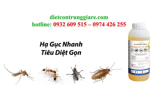 kiểm soát côn trùng gây hại quận 8 giá rẻ
