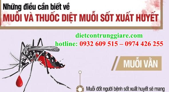 kiểm soát muỗi quận Bình Thạnh giá rẻ