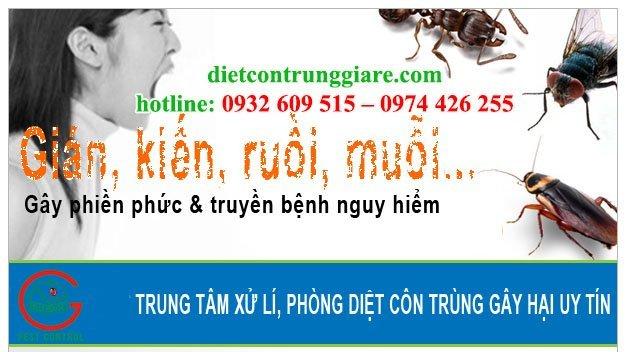 kiểm soát côn trùng gây hại tận nơi
