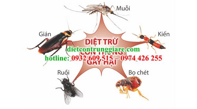 mẹo diệt côn trùng không dùng thuốc