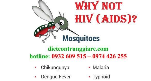 muỗi có thể truyền hiv sang người