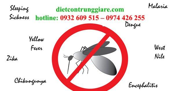 top 4 loài muỗi nguy hiểm nhất