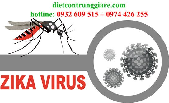 các triệu chứng muỗi đốt