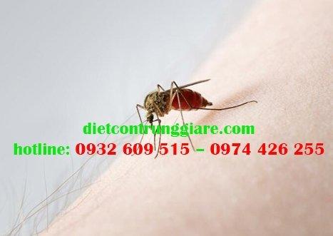 Bệnh do muỗi đốt gây ra