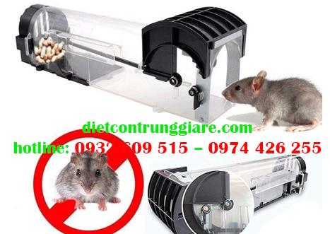 Kiểm soát chuột chuyên nghiệp