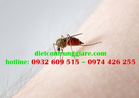 Muỗi có hại không?